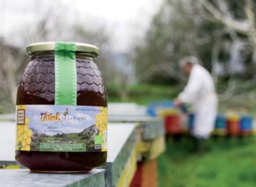 Miel Ecologica de La Colina