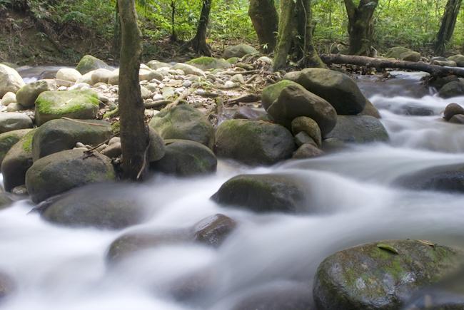 LIC Río Miera